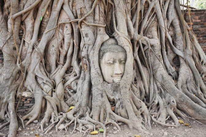 A Guide for Your Day Trip to Ayutthaya